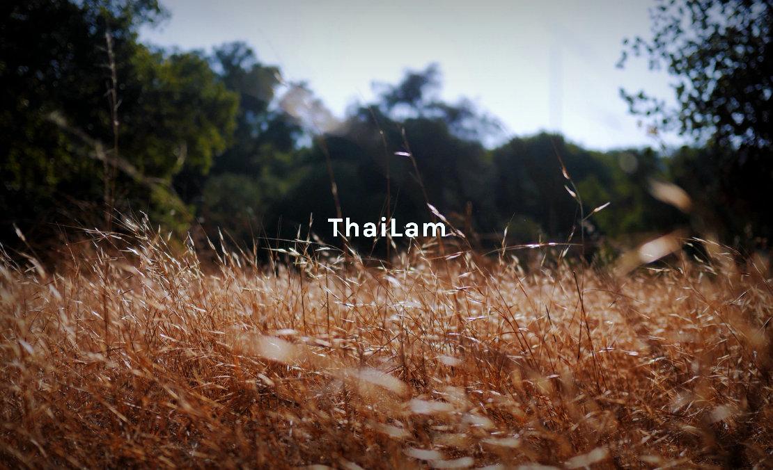 ThaiLam